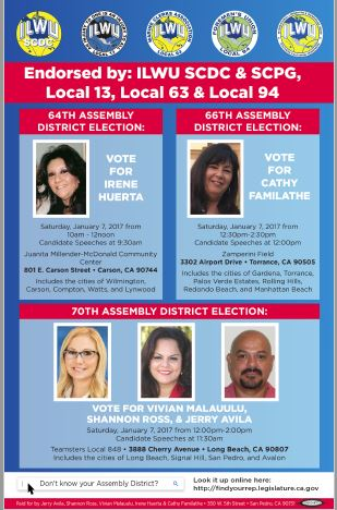 2016 Election Flyer